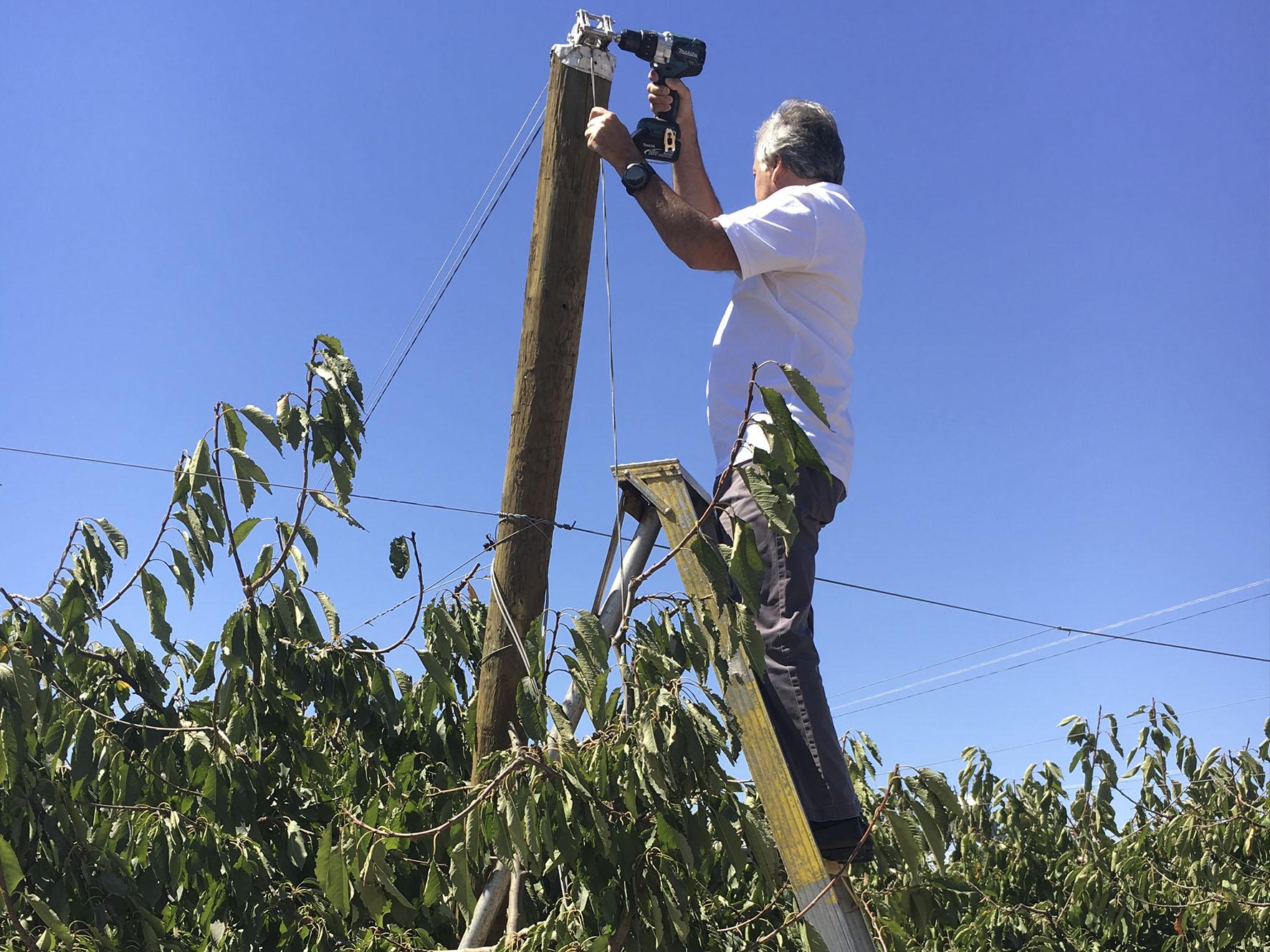 Un Agricultor Opera Nuestro Sistema Que Facilita La Apertura Y Cierre De Cobertores Frutales A Lo Largo De Hileras.