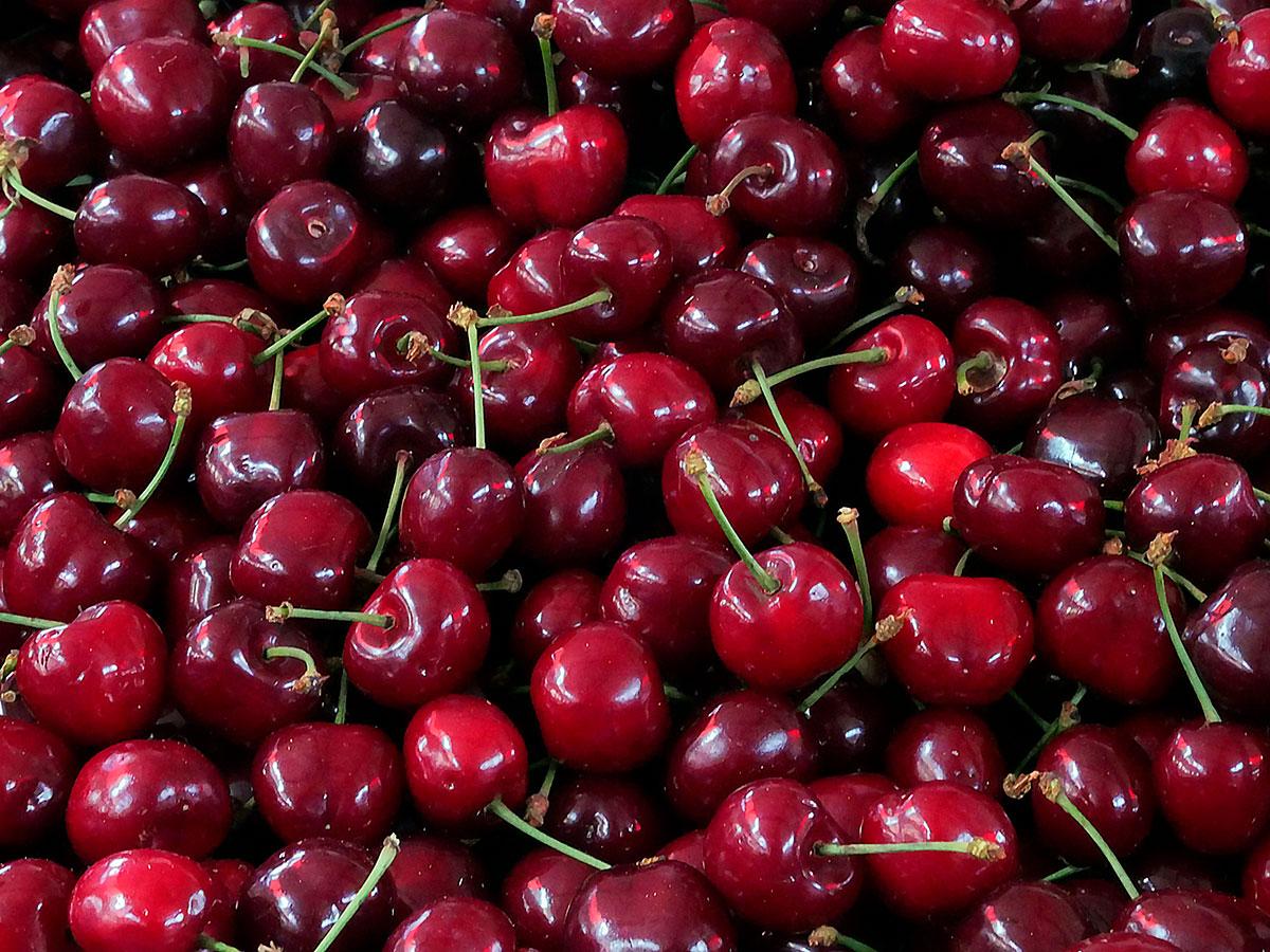 """Chile Fue «el Principal Importador A Nivel Mundial De Frutas A Los Destinos Asiáticos"""", Según SHAFFE"""